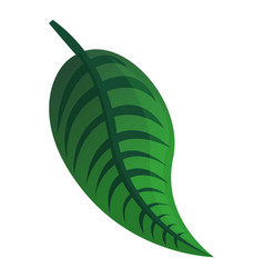 green tropical leaf icon cartoon style vector image