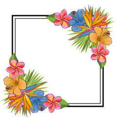 Tropical flowers and palm leaves bouquet elements vector