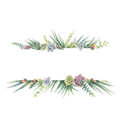 Watercolor banner of cacti and succulent vector