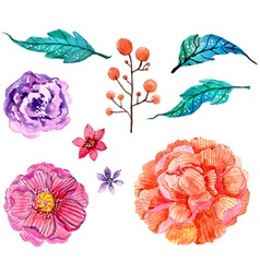 Watercolor flowers collection vector