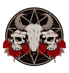 with skulls roses and pentagram vector image vector image