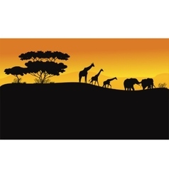 Animals in hill scenery vector image