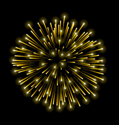 beautiful gold firework golden salute isolated on vector image