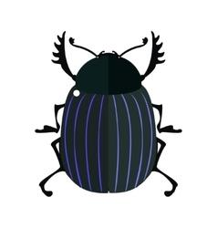 Scarab bug vector image