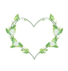 White Jasmine Blossoms in A Heart Shape vector image