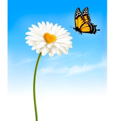 Daisy with a heart shaped middle and a butterfly vector