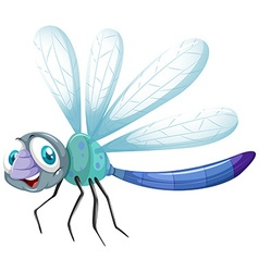 Dragonfly in blue color vector image