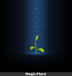 Growing Sprout copy vector image
