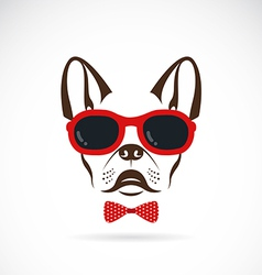 Images of dog bulldog wearing sunglasses vector