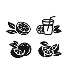 Orange fruit icons vector