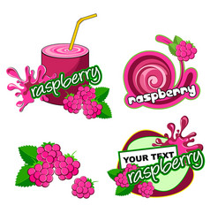 raspberry label background vector image