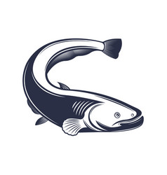 fish vector image