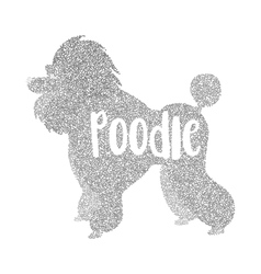 Form of round particles poodle dog flat vector