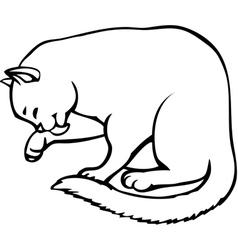 Kitten carefully washes vector