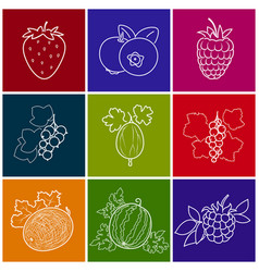 linear berry icons vector image