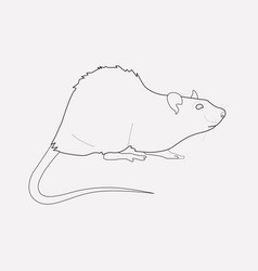 Rat icon line element of rat vector