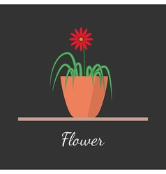 Flower in the pot vector image vector image