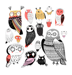 Cheerful collection graphic owls on a white vector