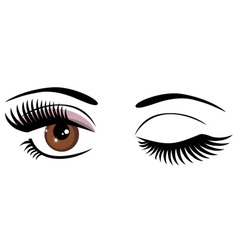 Eye brown wink vector