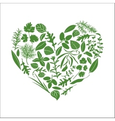 Floral heart made of herbs vector