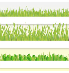 green grass set vector image
