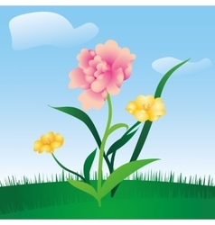 Spring floral meadow vector
