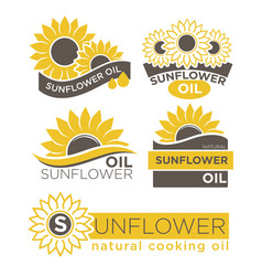 natural sunflower oil logotypes set vector image vector image