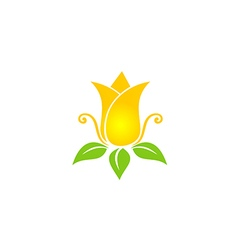 tulip flower beauty nature logo vector image vector image