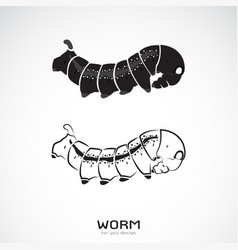 two caterpillar on white background icon worm vector image