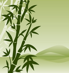 landscape with bamboo vector image