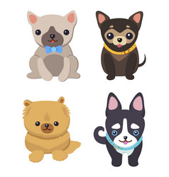 set of pictures with cute dogs vector image vector image