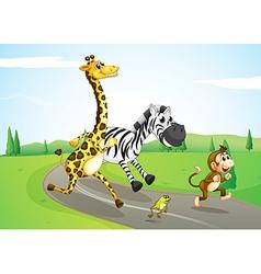 Animals running at the street vector