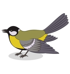 Bird Titmouse Isolated vector