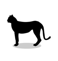 Cheetah wildcat black silhouette animal vector