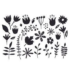 collection graphic elements flowers plants vector image