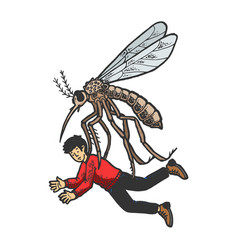 giant mosquito kidnaps human color sketch vector image