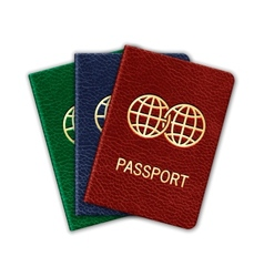 Realistic Passport Set Isolated On White vector