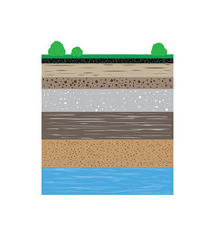 soil profiles with grass and bushes vector image