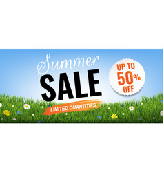 summer sale with grass border vector image
