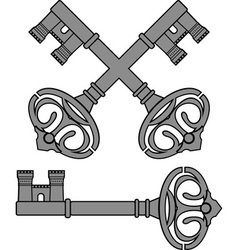 castle key vector image