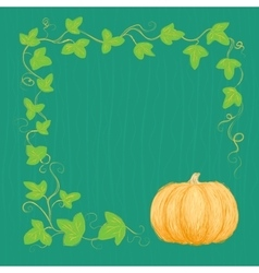 Hand drawn pumpkin and vine vector