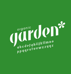 organic nature style font vector image