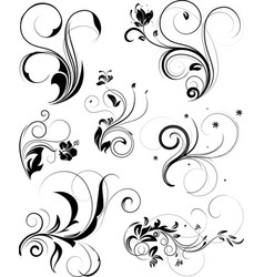set of floral vector image