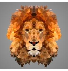 Lion low poly portrait vector image vector image