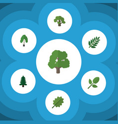 Flat icon ecology set of acacia leaf tree park vector