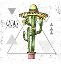 hand drawing cactus in sombrero hat vector image
