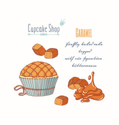 Hand drawn cupcake caramel candy flavor vector