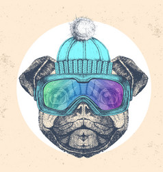 Hipster animal pug dog in winter hat vector