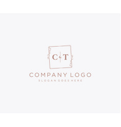 Initial ct letters decorative luxury wedding logo vector