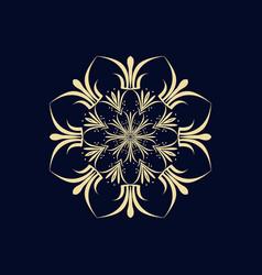 mandala ethnic ornament isolated vector image